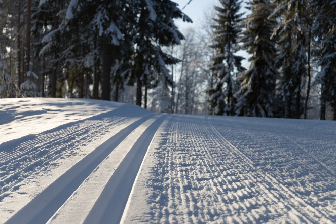 snow-3130500_1920
